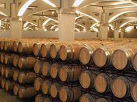 Requena Wine Tour for Groups